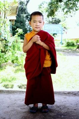 young monk @ Rinchenpong Monastery